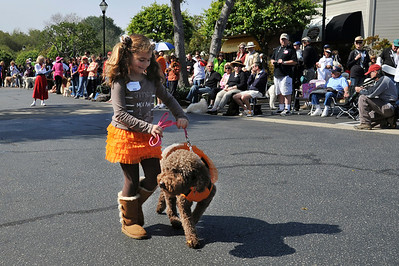 Poodle Day 2012-Fashion Show