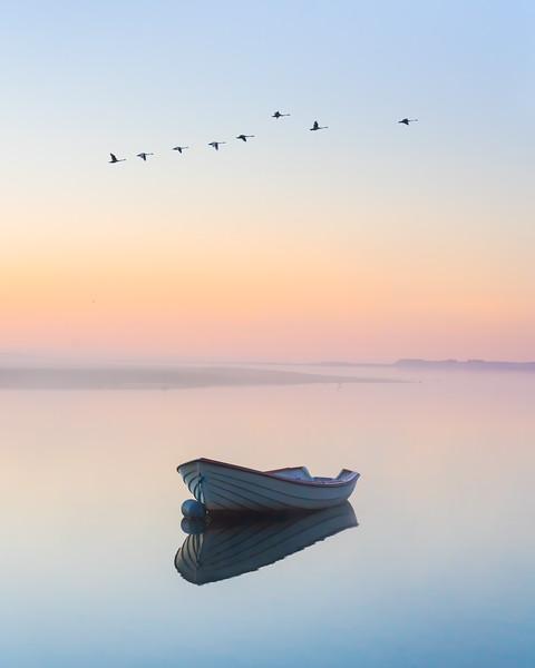 Boat Limfjorden Denmark Landscape Photography sunrise birds reflection 4-5.jpg