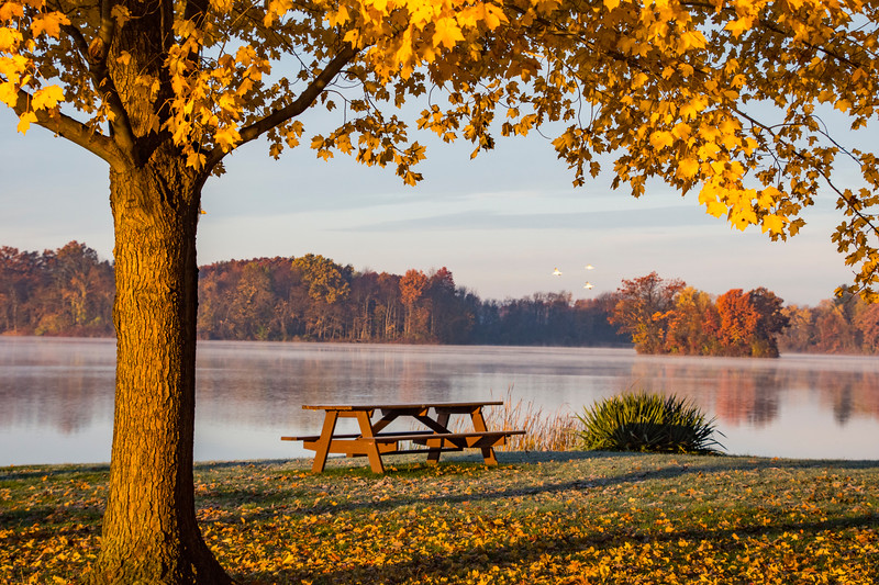 Fall-color-WingfootLakeSP-Nov11q.jpg