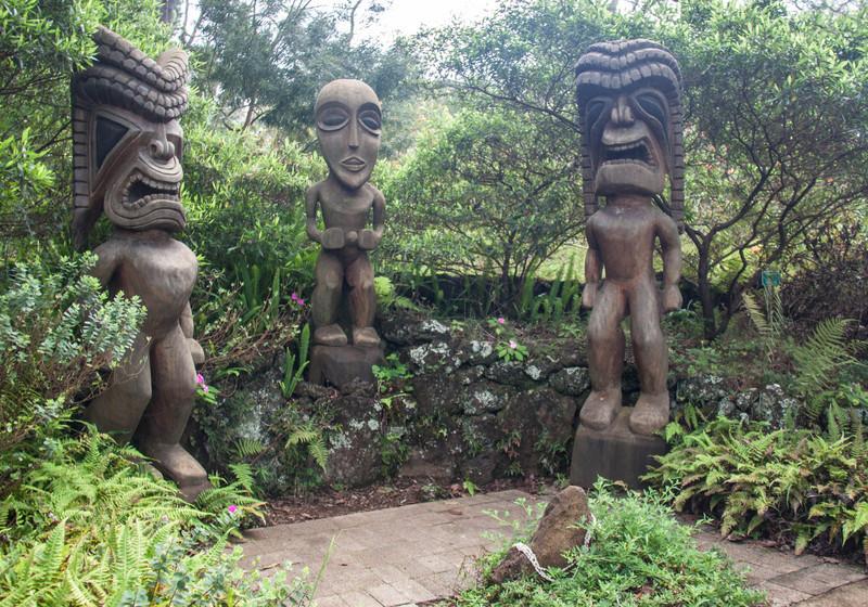 Tiki at the Kula Botanical Gardens, Kula Maui. A tiki is a wood or stone image of a Polynesian supernatural power, usually used to mark land boundries or sacred sites.