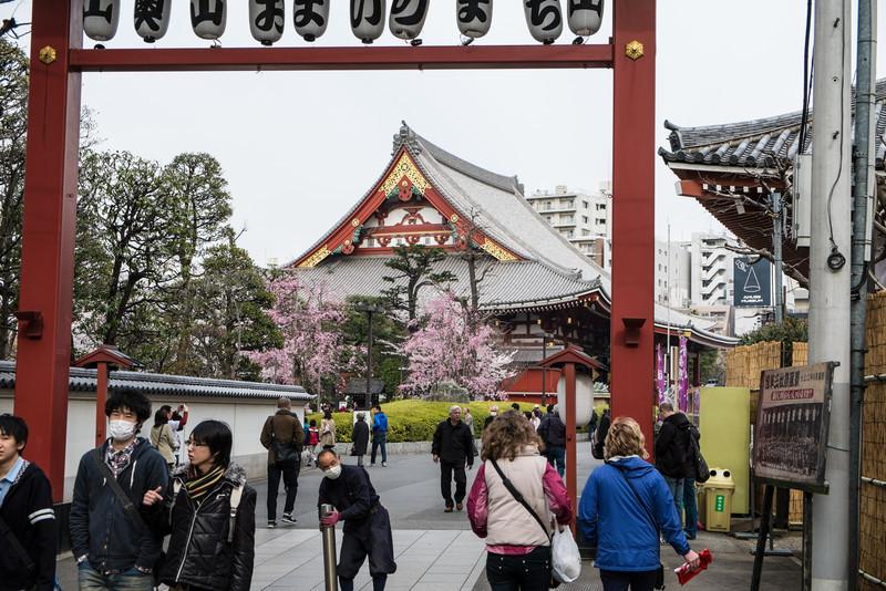 Tokyo Day 3 (259 of 271).jpg