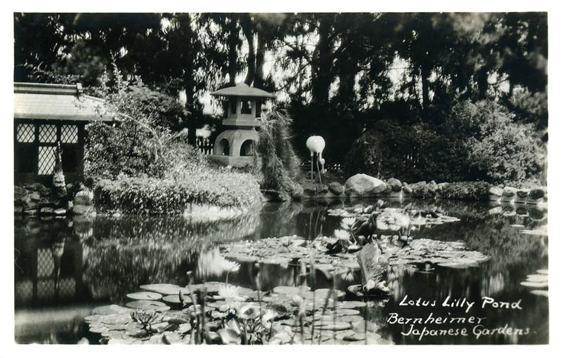Bernheimer Lilly Pond