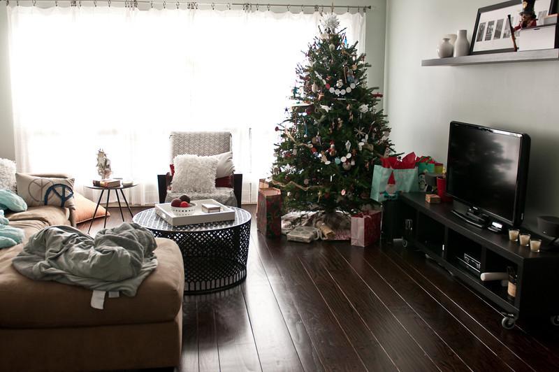 Christmas 2012-0115.jpg