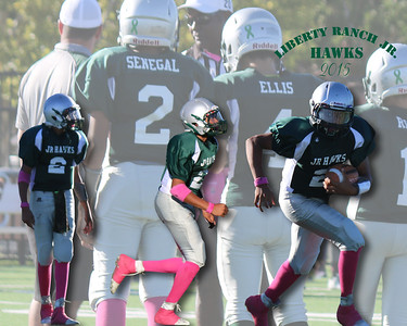 Jr Hawks FootBall and Cheer