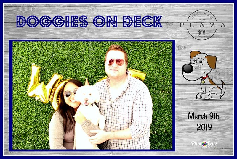 Doggys on Deck11.jpg