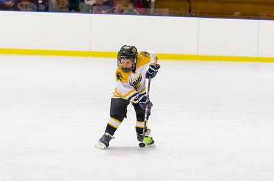 Game 3 - Berkshire Bruins vs. Franklin County Hockey Association