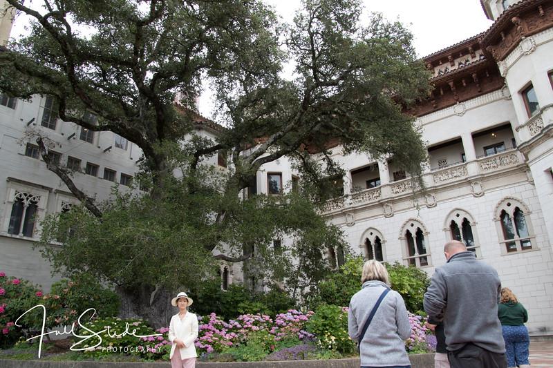 Hearst Castle-12.jpg