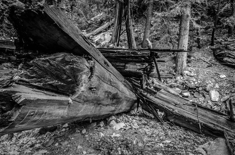 Broken - Forest Falls, CA, USA