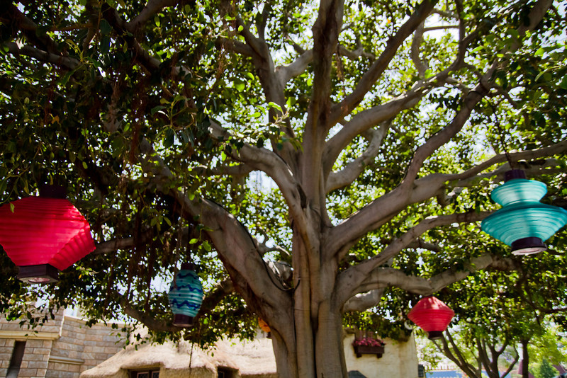 Mad Tea Party Tree