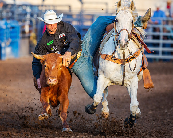 2019 Ventura Rodeo - Saturday Evening