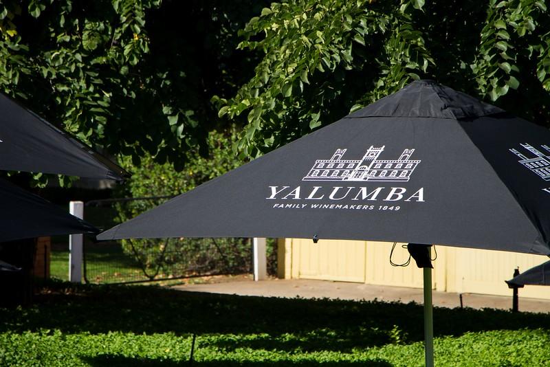 Yalumba-9858.jpg