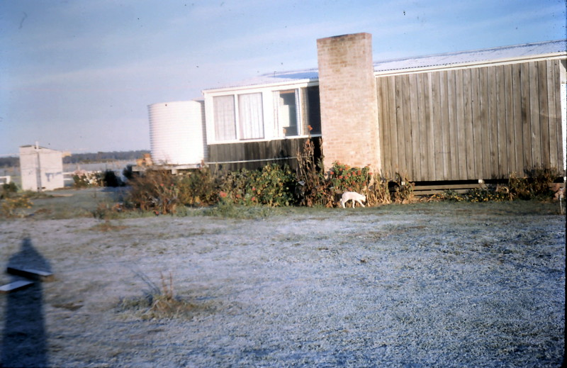 1965-6-17 (17) Frost.JPG