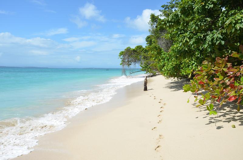 Bocas del Toro Boat Tour 33.jpg
