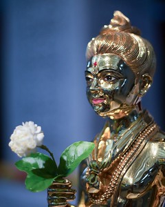 Harikrishana weds Devi
