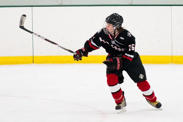 NCHS Hockey to print 2014-15 season