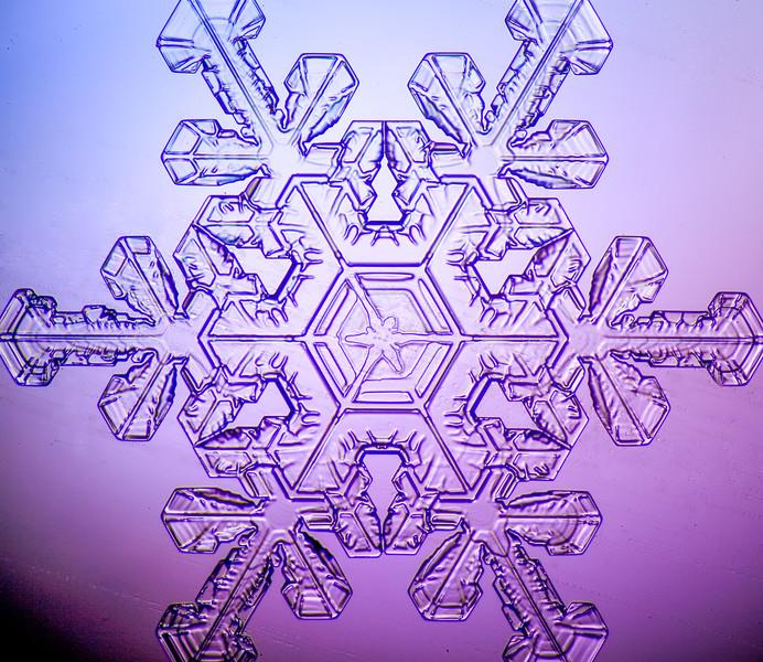 snowflake-0278-Edit.jpg