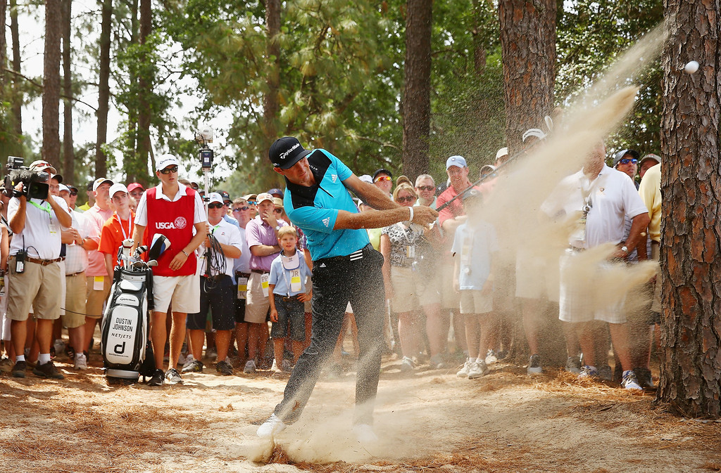 . Dustin Johnson of the United States hits a shot from the natural habitat on the eighth hole  during the first round of the 114th U.S. Open at Pinehurst Resort & Country Club, Course No. 2 on June 12, 2014 in Pinehurst, North Carolina.  (Photo by Streeter Lecka/Getty Images)