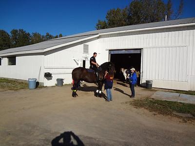 2013 Regional Equestrian