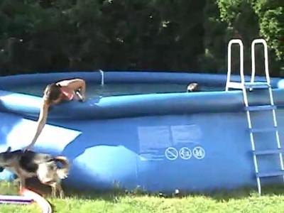 2008 Video's