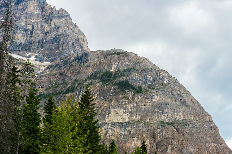 Mountain view near the spiral train tunnels.Shot taken from Yoho Valley road.