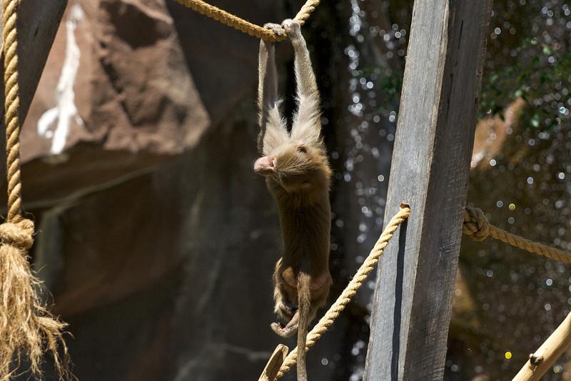 Zoo_Trip_24.jpg