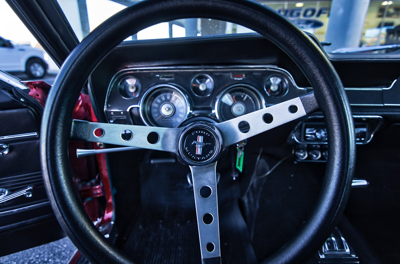 Mustang8.jpg