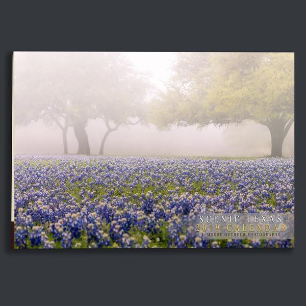 Texas Front.jpg