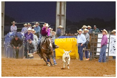 2019-DS Rodeo