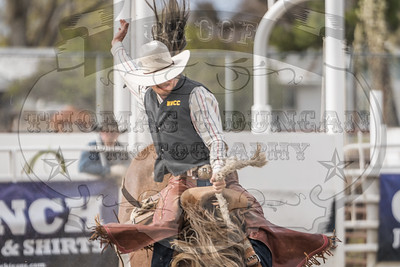 NW Region College Rodeo 2019