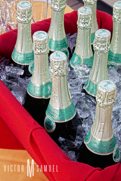 EbusuaSummerBall2011_ATRIUM_Champagne