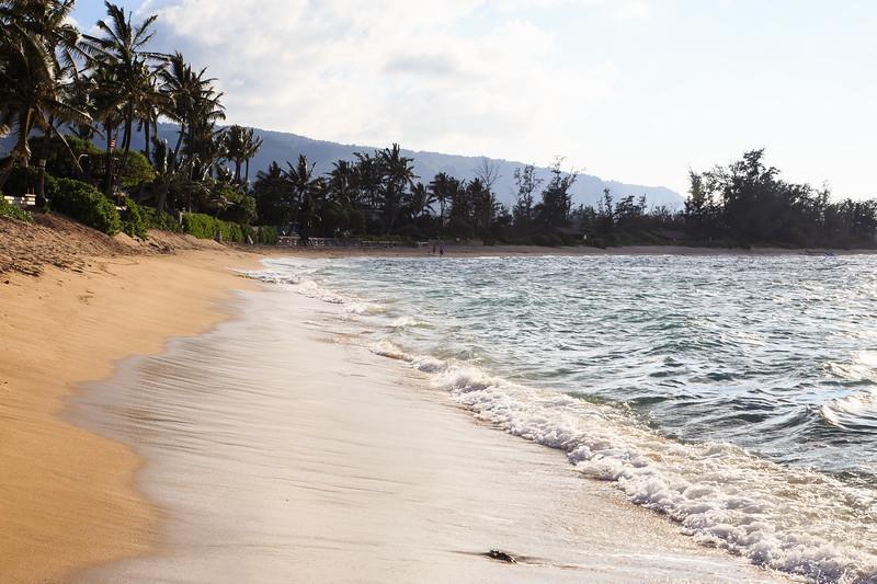 Hawaii-North Shore 2017-8894.jpg
