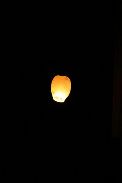 SprinFling2011_0322.jpg