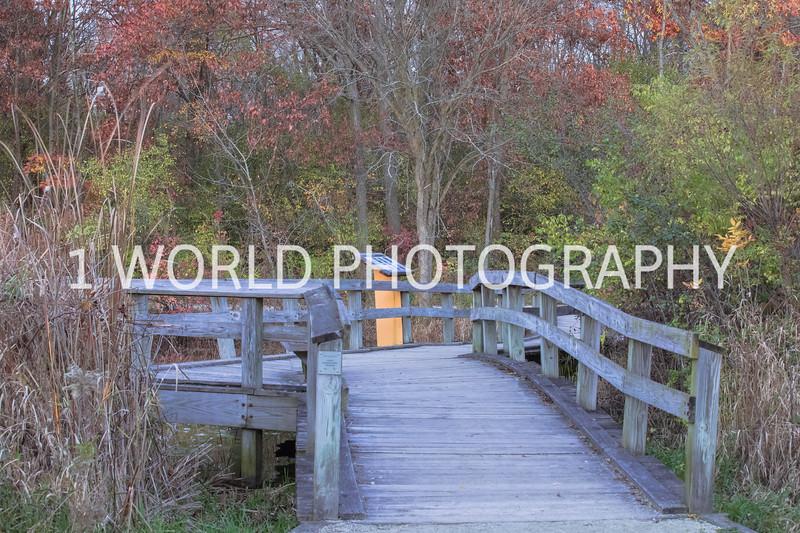 Herrick Lake FP Fall '16-8.jpg