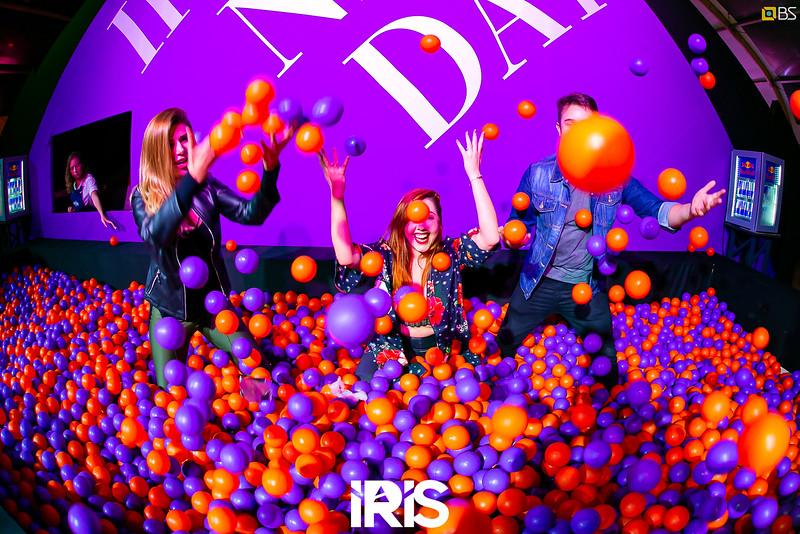 mai.18 - Iris
