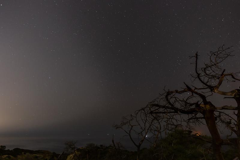 Torrey Pines Night-25.jpg