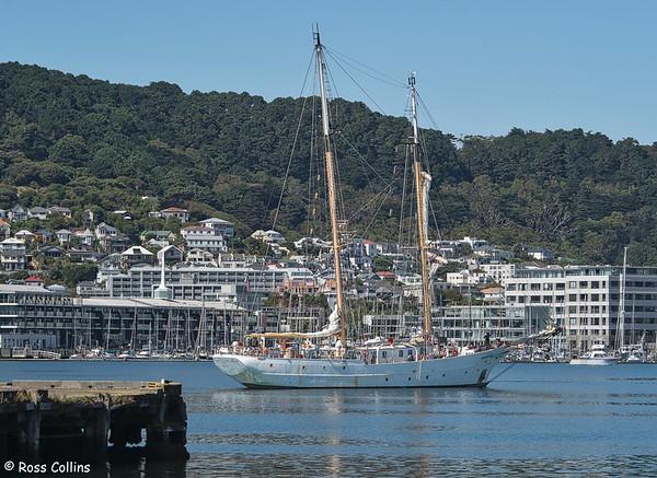 'SSV Robert C Seamans' at Wellington 2020