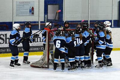 10U Girls vs. Osseo Maple Grove(17-Jan-2014)