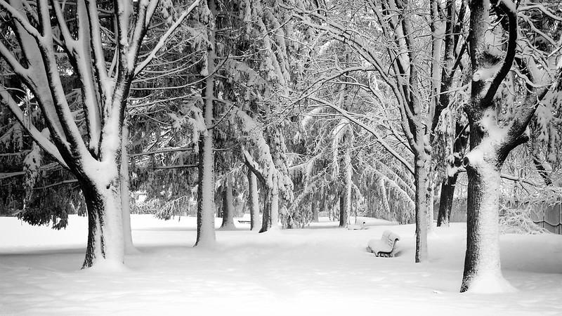 snow-lx3-130228-p1030508-centerfocus.jpg