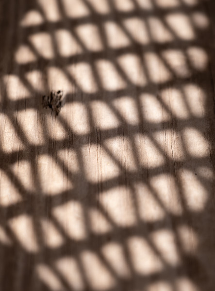 shadowy pattern