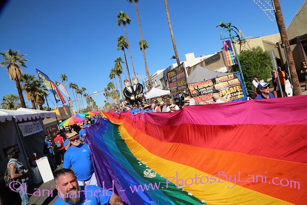 Palm Springs Pride Parade 11/9/14