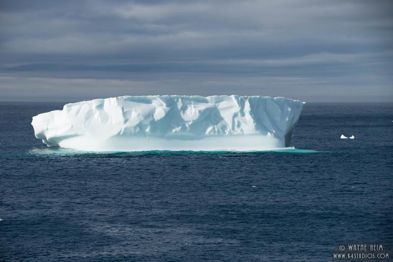 Iceberg  71   Photography by Wayne Heim