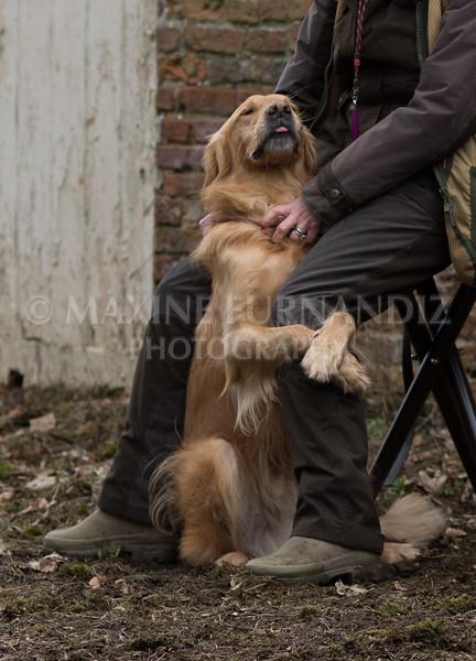 Dogs-5676.jpg