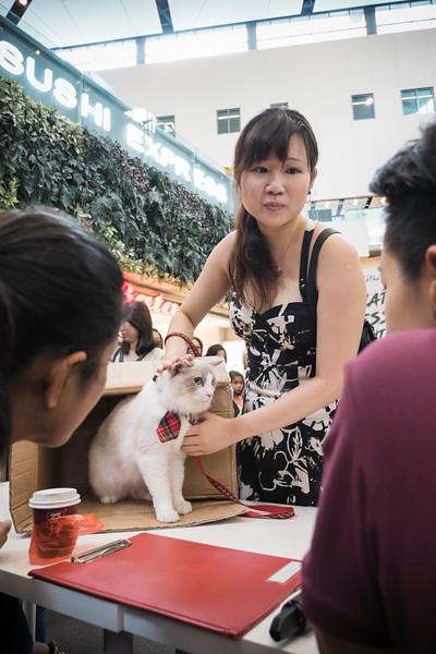 VividSnaps-The-Seletar-Mall-CAT-Dress-Up-Contest-170.jpg