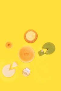Cheese Garden_Aug 30