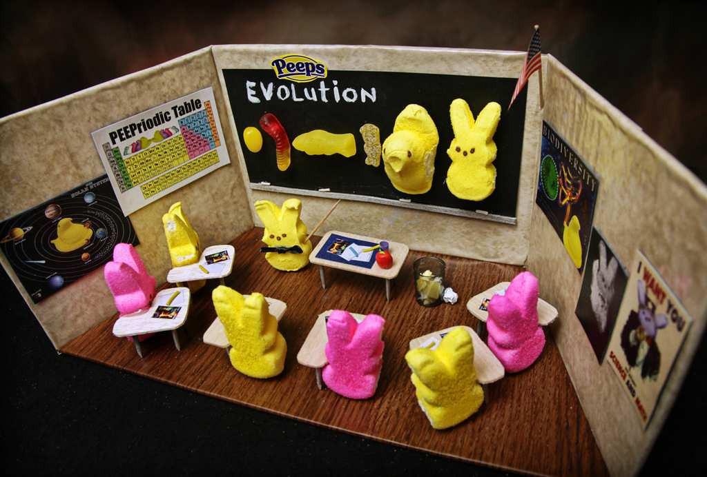 ". \""Peep Evolution Lesson,\"" by Jill Schaefer of Minnetonka"