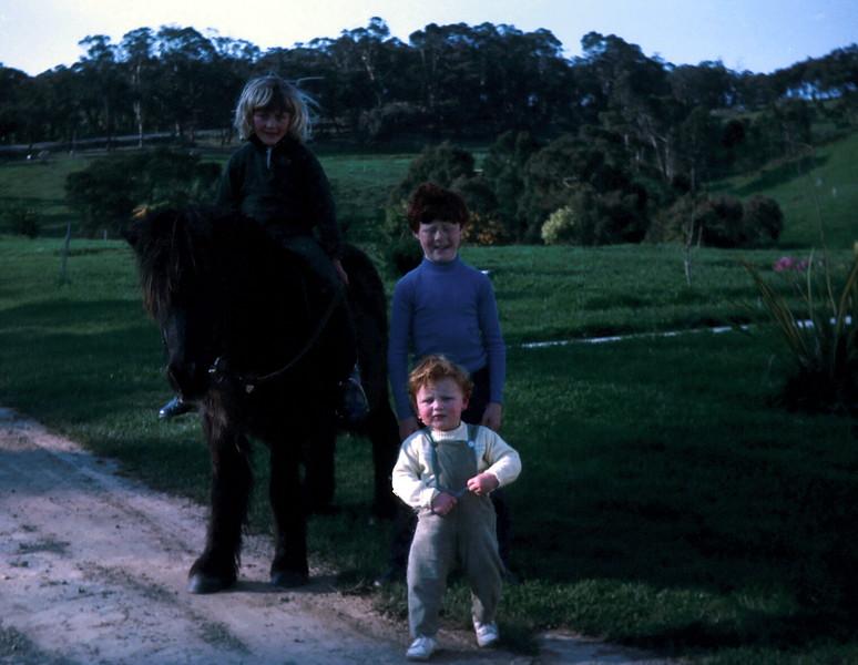 1972-9 (11) Susan 7 yrs 2 mths  on Sambo, David 8 yrs 9 mths & Allen 16 mths.jpg