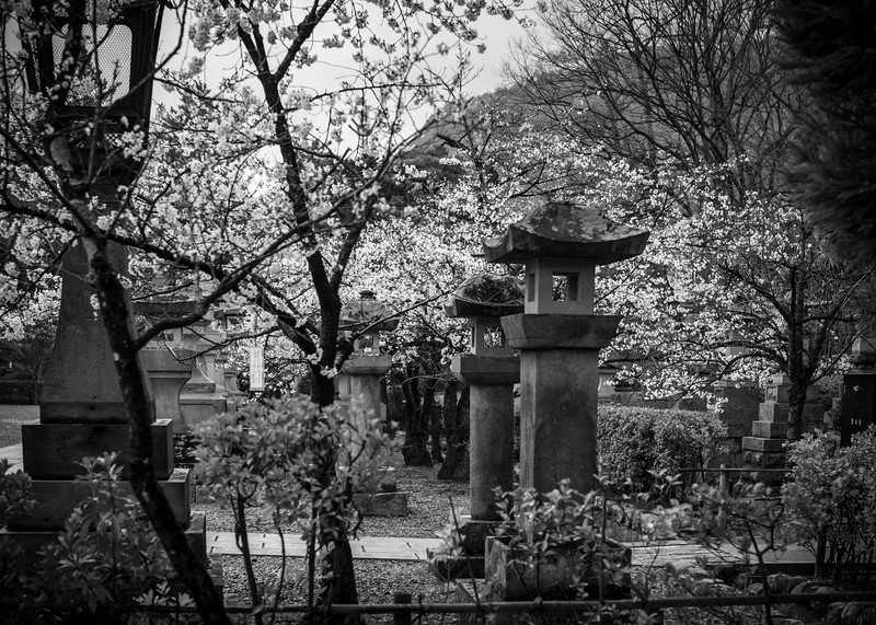 Nagano  12042013 009.jpg