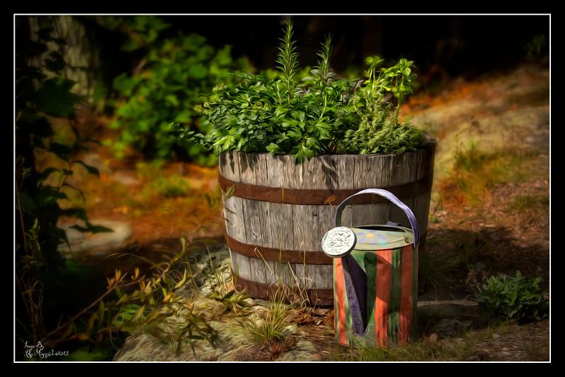 """""""Herb Garden"""""""