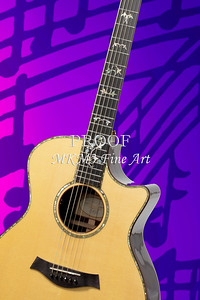 Fine Art Acoustic Guitar Prints Taylor 914C