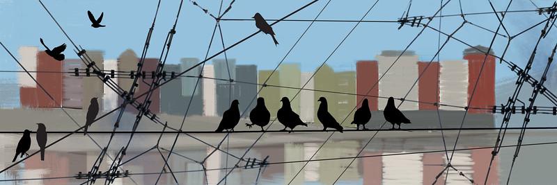 Comp02_Birds.jpg